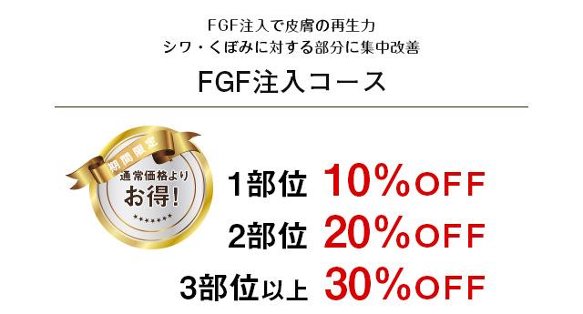 FGF注入コース