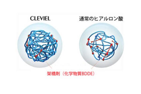 世界で初めての50mg/mlの高密度化・高濃度化に成功したクレヴィエルコントア